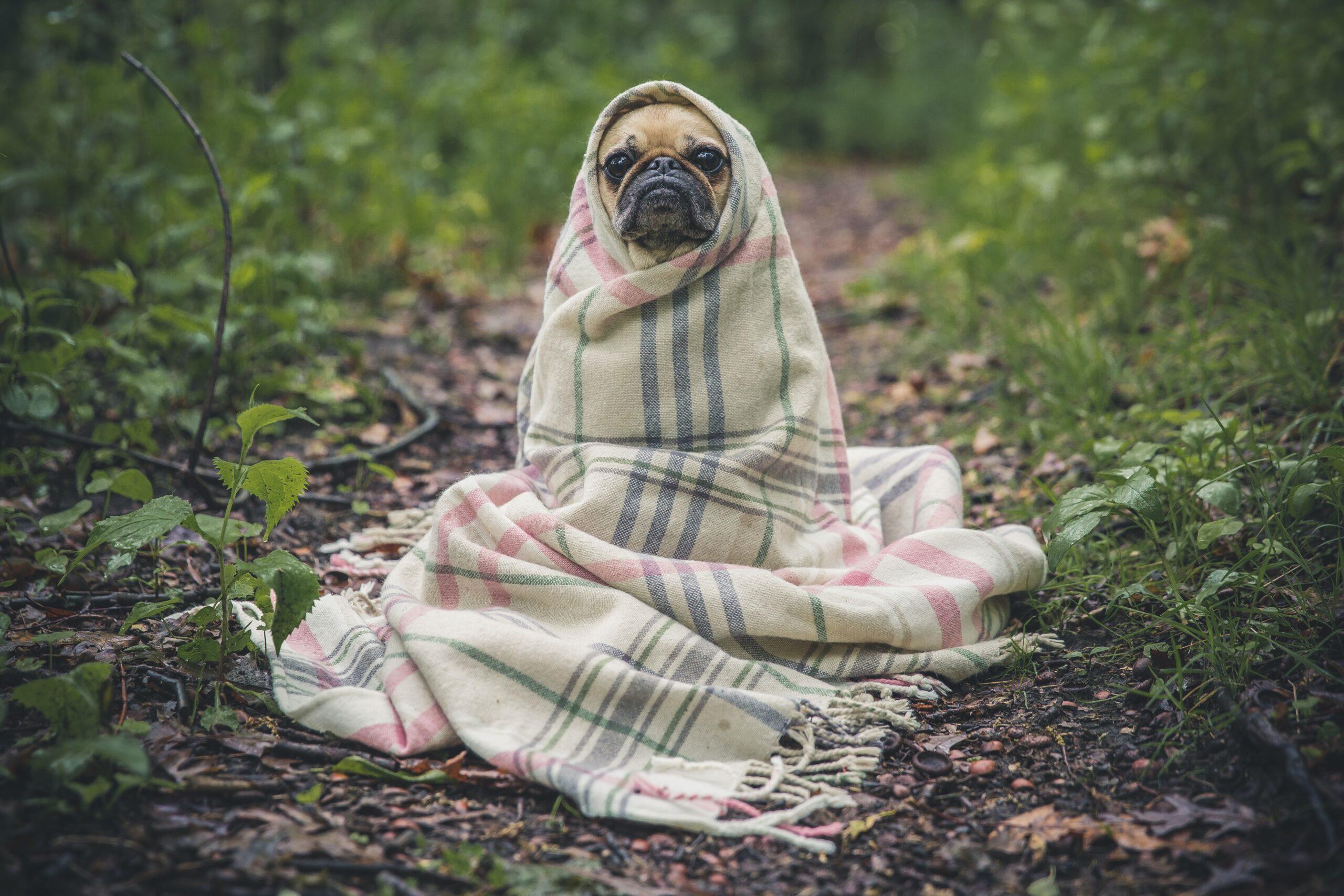 リウマチを治す障害となる寒さ